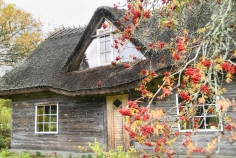 Casa típica antigua